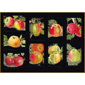 Яблоки Набор для вышивания Thea Gouverneur 2082.05
