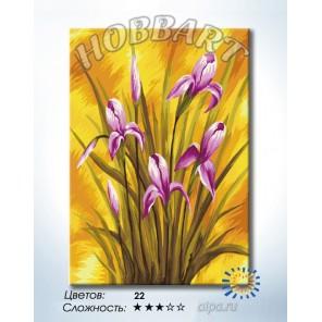 1_ Ирисы на золотом Раскраска по номерам на холсте Hobbart