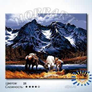 Количество цветов и сложность Привал Раскраска по номерам на холсте Hobbart HB4050353