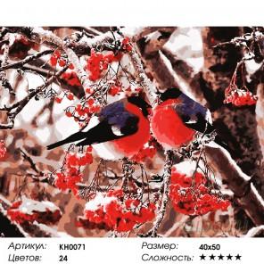Снегири Раскраска картина по номерам на холсте KH0071