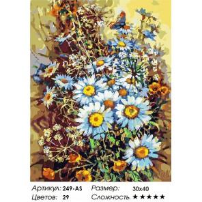 Букет с ромашками и бабочкой Раскраска картина по номерам на холсте Белоснежка 249-AS