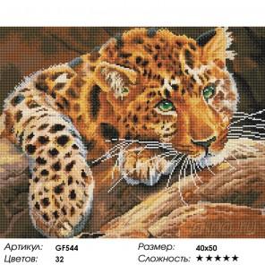 Количество цветов и сложность Ягуар Алмазная мозаика вышивка Painting Diamond GF544