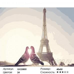 Количество цветов и сложность Париж и голуби Раскраска картина по номерам на холсте GX23805