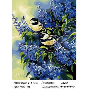 Синицы в сирени Раскраска картина по номерам на холсте Белоснежка 216-CG
