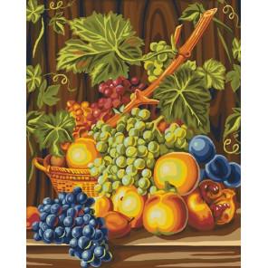Виноградная лоза Раскраска картина по номерам на холсте CG913