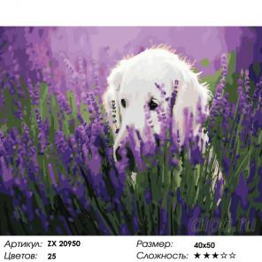Количество цветов и сложность Собака в цветах Раскраска картина по номерам на холсте ZX 20950