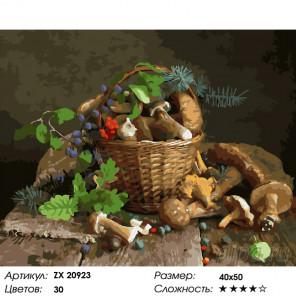 Количество цветов и сложность Корзина грибов Раскраска картина по номерам на холсте ZX 20923