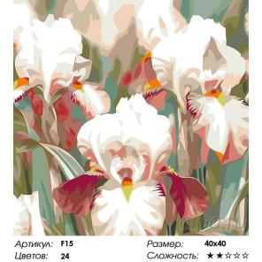 Количество цветов и сложность Ирисы Раскраска картина по номерам на холсте F15