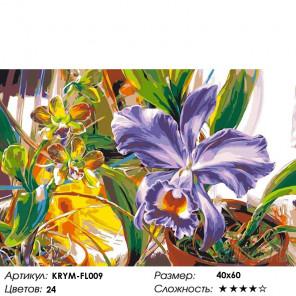 Количество цветов и сложность Фиолетовый нарцисс Раскраска картина по номерам на холсте KRYM-FL009