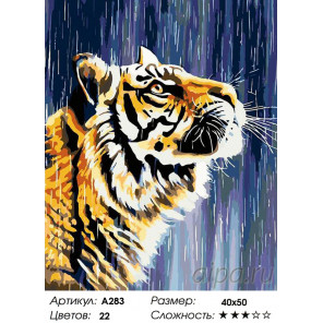 Тигр под дождем Раскраска картина по номерам на холсте A283