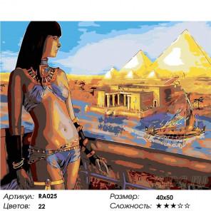 Количество цветов и сложность Египетская красотка Раскраска картина по номерам на холсте RA025