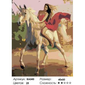 Количество цветов и сложность Верхом на единороге Раскраска картина по номерам на холсте RA045