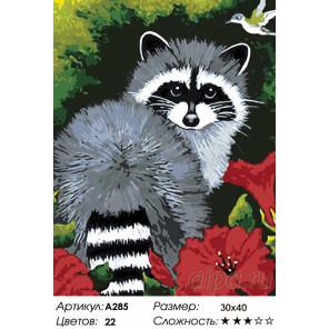 Количество цветов и сложность Енотик Раскраска картина по номерам на холсте A285