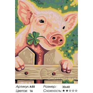 Количество цветов и сложность Поросенок Раскраска картина по номерам на холсте A55