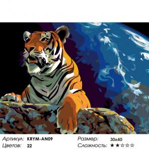 Властелин мира Раскраска картина по номерам на холсте KRYM-AN09