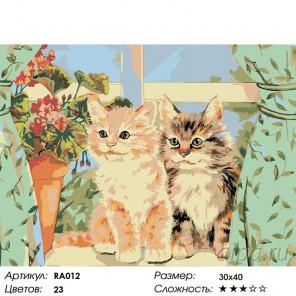 Котята на окне Раскраска картина по номерам на холсте RA012