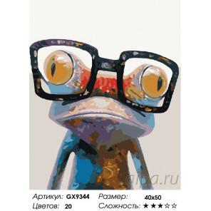 Количество цветов и сложность Лягушка в очках Раскраска картина по номерам на холсте GX9344