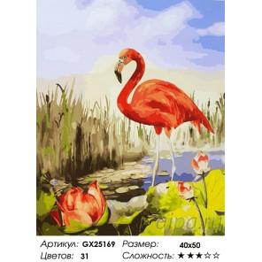 Количество цветов и сложность Красный фламинго Раскраска по номерам на холсте GX25169
