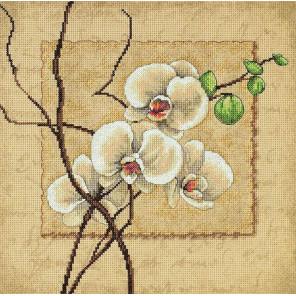 Восточные орхидеи 35176 Набор для вышивания Dimensions ( Дименшенс )