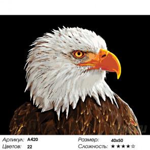 Количество цветов и сложность Гордый профиль Раскраска по номерам на холсте Живопись по номерам A420