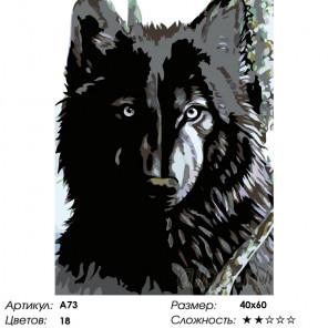 Хозяин леса Раскраска по номерам на холсте Живопись по номерам A73