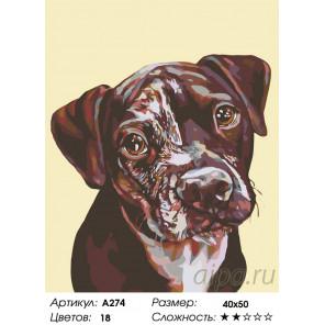 Количество цветов и сложность Виноватый вид Раскраска по номерам на холсте Живопись по номерам A274