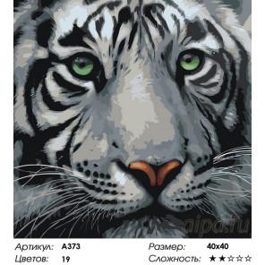 Мудрый тигр Раскраска по номерам на холсте Живопись по номерам A373