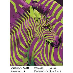 Количество цветов и сложность Детеныш зебры Раскраска по номерам на холсте Живопись по номерам PA110