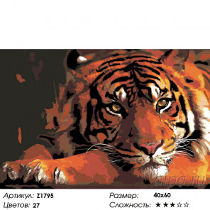 Количество цветов и сложность Тигр в уединении Раскраска по номерам на холсте Живопись по номерам Z1795