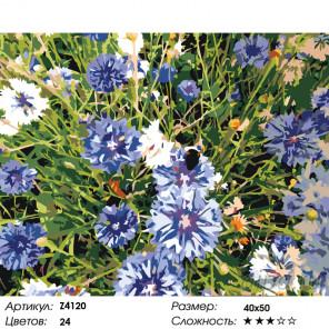 Количество цветов и сложность Васильки Раскраска по номерам на холсте Живопись по номерам Z4120