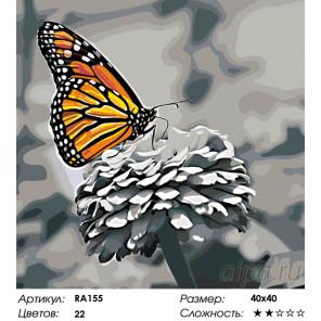 Количество цветов и сложность Прекрасная бабочка Раскраска по номерам на холсте Живопись по номерам RA155