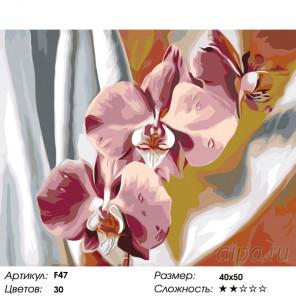 Количество цветов и сложность Шелковые орхидеи Раскраска по номерам на холсте Живопись по номерам F47