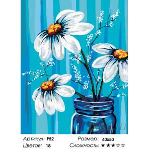 Количество цветов и сложность Скромный букет Раскраска по номерам на холсте Живопись по номерам F52