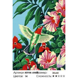 Количество цветов и сложность Колибри и цветы Раскраска по номерам на холсте Живопись по номерам KRYM-AN02