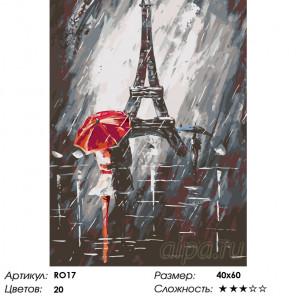Количество цветов и сложность Французский поцелуй Раскраска по номерам на холсте Живопись по номерам RO17