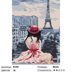 Воплощение мечты Раскраска по номерам на холсте Живопись по номерам RO44