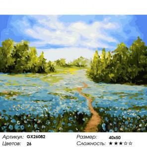 Количество цветов и сложность Васильковое поле Раскраска по номерам на холсте GX26082