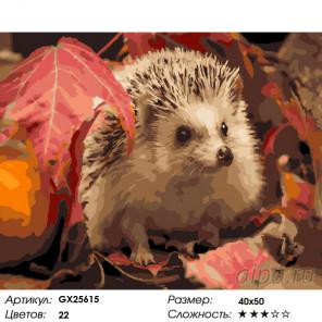 Ежик осенью Раскраска по номерам на холсте