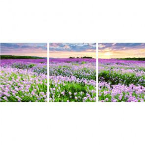 Поле весенних цветов Триптих Раскраска картина по номерам на холсте PX5241