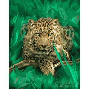 Гепард в зелени Раскраска картина по номерам на холсте GX7798