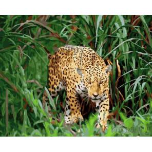 Крадущийся ягуар Раскраска картина по номерам на холсте GX22038