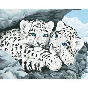 Снежные барсы Раскраска картина по номерам на холсте G194