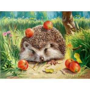 Ежик с яблоками Раскраска картина по номерам на холсте EX5929