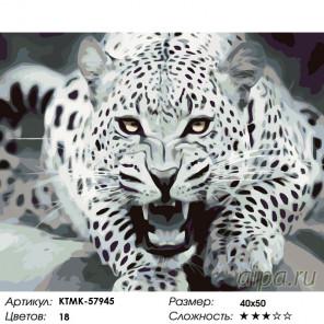 Количество цветов и сложность Угроза леопарда Раскраска по номерам на холсте Живопись по номерам KTMK-57945