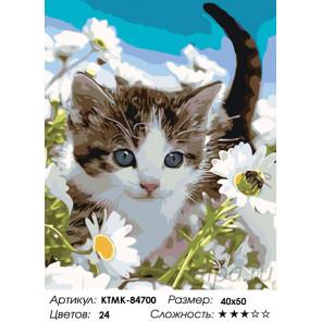 Раскладка Прогулка котенка Раскраска по номерам на холсте Живопись по номерам KTMK-84700